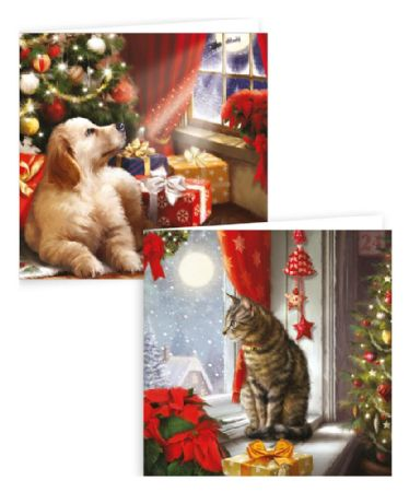 Kitten Christmas Cards.24 Packs Of 10 Puppy And Kitten Christmas Cards New