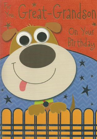 Silverline Birthday Cards Great Grandson Wgc Sl50008a10 Male